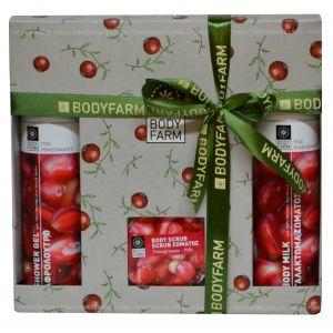 Подарочный набор косметики Bodyfarm (Бодифарм) гранат (гель для душа 250 мл+молочко для тела 250 мл+скраб 200 мл)