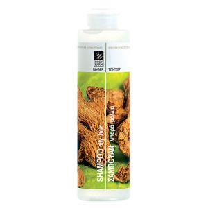 Купить Шампунь для волос Bodyfarm (Бодифарм) имбирь 250мл