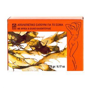 Купить Мыло для тела и лица Bodyfarm (Бодифарм) отшелушивающее 175гр