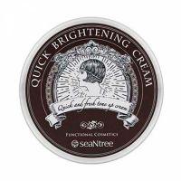Осветляющий крем с гиалуроновой кислотой SeaNtree Quick Brightening Cream 90 г